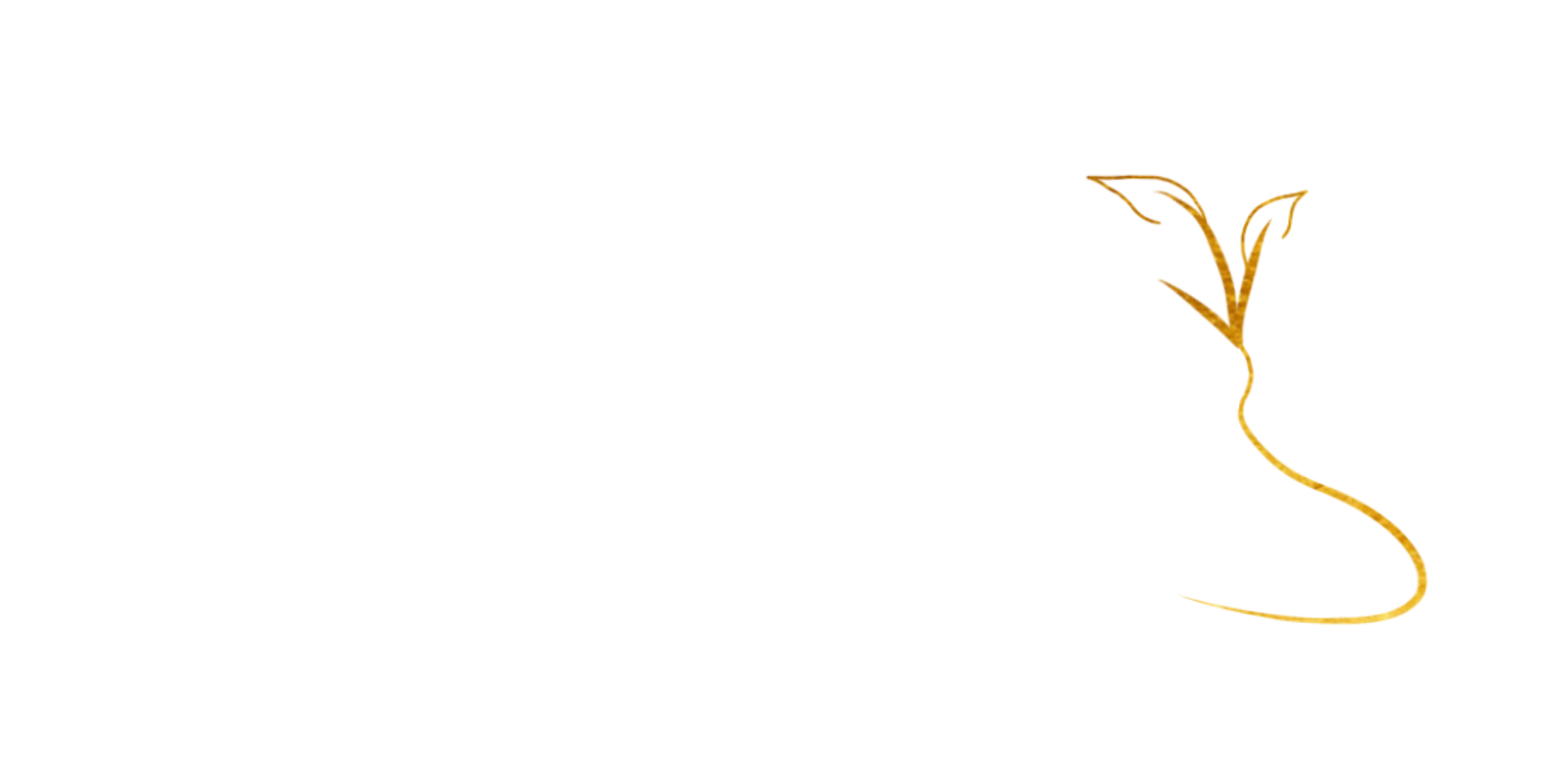 MoneyHeave